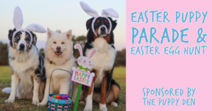 Puppy Parade at Eastern Shore Centre